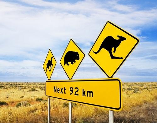 khac-biet-giua-tieng-anh-o-my-va-australia