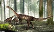 Phát hiện loài khủng long cổ dài lâu đời nhất