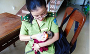 Voọc con lạc mẹ được đưa về Thảo Cầm Viên Sài Gòn