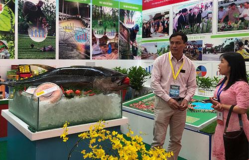 Gian hàng trưng bày các kết quả ứng dụng khoa học trong nông nghiệp. Ảnh: BN.