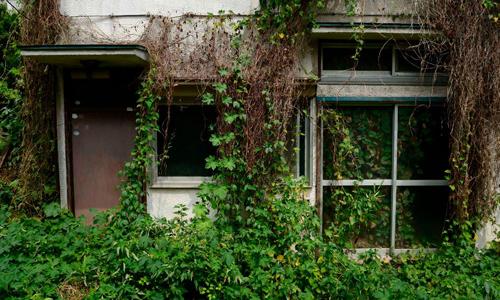 Những ngôi nhà ma tặng không ở Nhật Bản