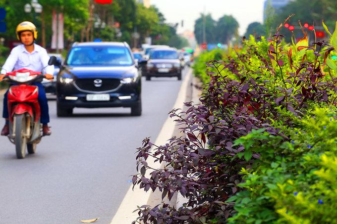 Hai mương nước sẽ cống hóa để làm đường đua F1 ở Hà Nội