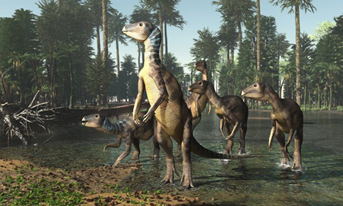 Hình ảnh phục dựng khủng long Weewarrasaurus pobeni. Ảnh: Science Alert.