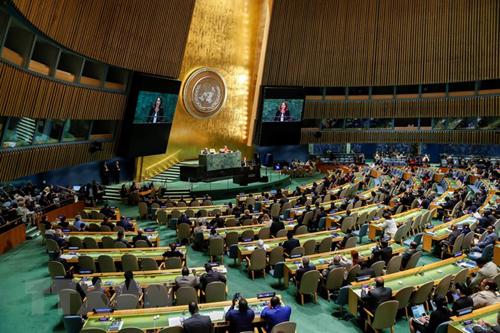 Một phiên họp của Đại hội đồng LHQ. Ảnh: AFP.