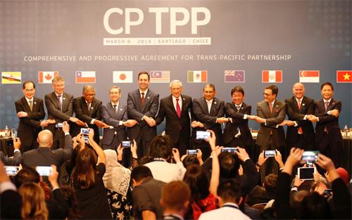 11 nước cam kết tham gia hiệp định CPTPP. Ảnh: Reuters.