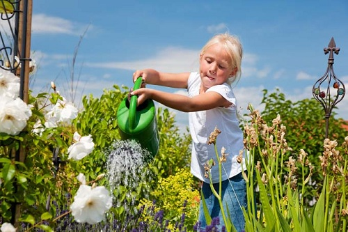 Tưới cây là một trong những hoạt động có mục đích mà mọi trẻ nhỏ yêu thích. Ảnh: Gardeners Path