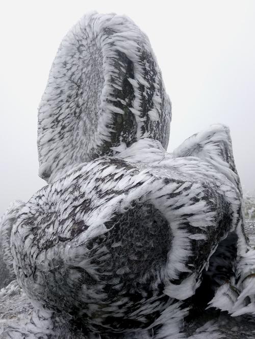 Những tạo hình khác lạ trong băng giá Mẫu Sơn