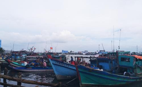 Hơn 2.000 tàu thuyền ở Cà Mau đã vào nơi neo đậu an toàn trong sáng 2/1. Ảnh: Hoàng Hạnh.