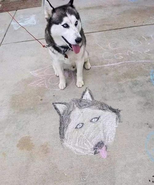 Ai là người vẽ thứ này?.