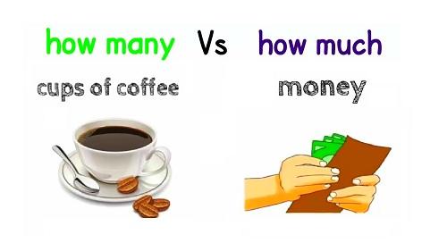 Cách dùng 'much' và 'many' trong tiếng Anh