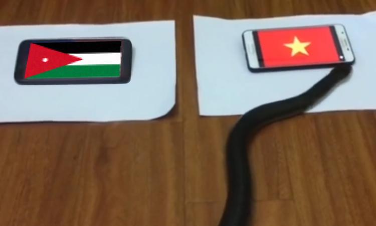 ''Rắn thần'' và cá sấu dự đoán khác nhau trận Việt Nam gặp Jordan -