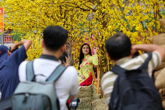 Thiếu nữ xúng xính tạo dáng trên con đường hoa mai ở Sài Gòn
