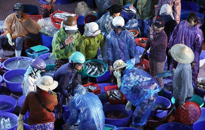 Cảng cá Quy Nhơn tấp nập mua bán ngày giáp Tết