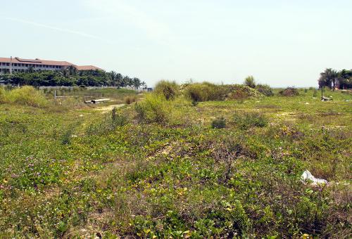 Khu đất ven biển của Vũ Nhôm. Ảnh: Nguyễn Đông.