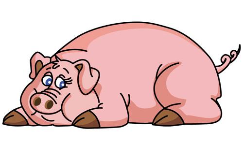 10 truyện cười hài hước về lợn dịp Tết Kỷ Hợi - 2