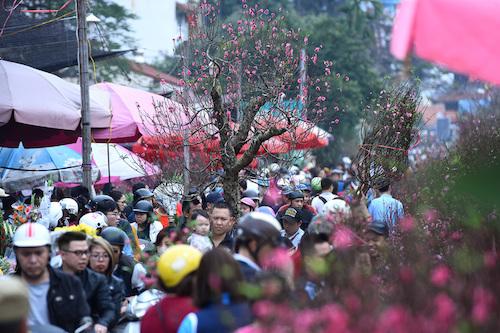 Người Hà Nội sắm đào đón Tết Nguyên đán Kỷ Hợi 2019. Ảnh: Giang Huy
