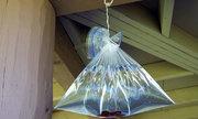 Tại sao ruồi lại tránh xa túi bóng đựng nước?