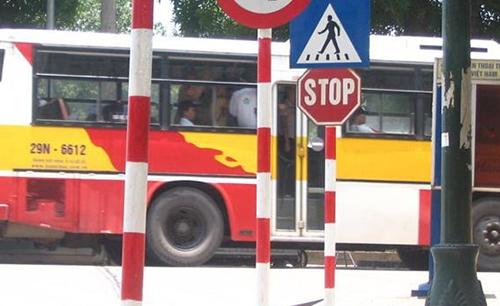 Sau vô lăng - Stop - biển báo vô nghĩa với tài xế Việt