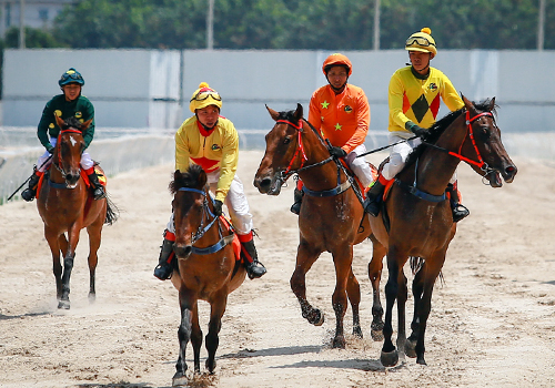 Trước Đà Nẵng, Bình Dương cũng đã có trường đua ngựa 100 triệu USD. Ảnh: Thành Nguyễn.