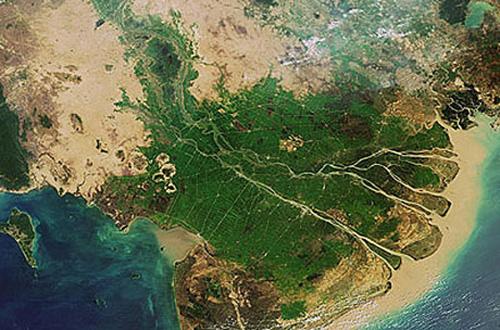 Sông Cửu Long ở đồng bằng Tây Nam Bộ.