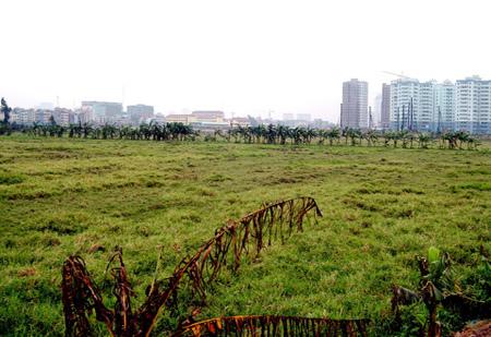 Một số đề xuất sửa đổi về đất đai sẽ chưa được Quốc hội xem xét trong chương trình nghị sự năm 2019. Ảnh: HH