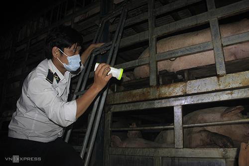 Quảng Trị khẩn cấp lập chốt kiểm dịch giáp Thừa Thiên Huế -