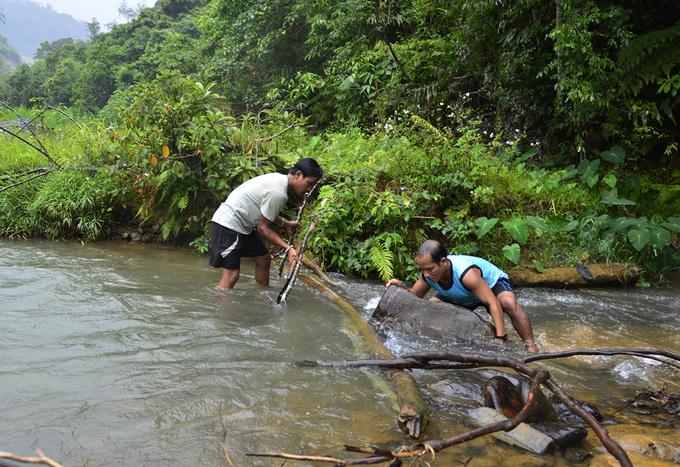 Người Cơ Tu dùng vỏ cây bắt cá suối