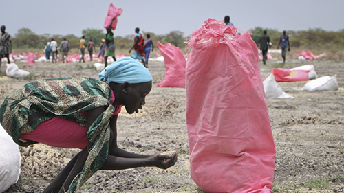 A woman scoops fallen sorghum grain off the ground after an aerial food drop by an aid organization in Kandak, South Sudan, May 2, 2018.