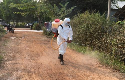 Thừa Thiên Huế phát hiện thêm ổ dịch tả lợn châu Phi