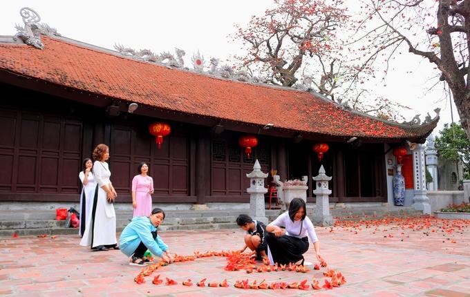 Cây gạo 500 tuổi nở hoa đỏ rực trên mái từ cổ ở Hải Phòng