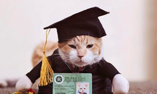 Archer chụp ảnh tốt nghiệp cùng tấm thẻ sinh viên. Ảnh: Petograpiya