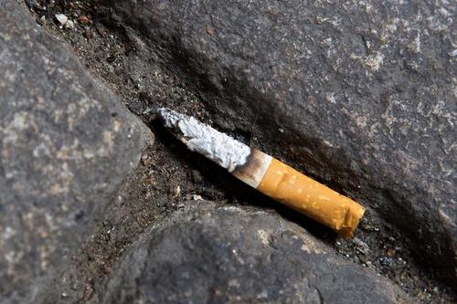 Khoản tiền phạt gần 600 bảng Anh xuất phát từ mẩu đầu lọc thuốc bị vứt bừa bãi.