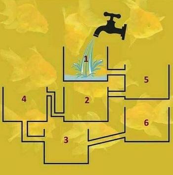 Bốn câu đố kích thích tư duy - 3