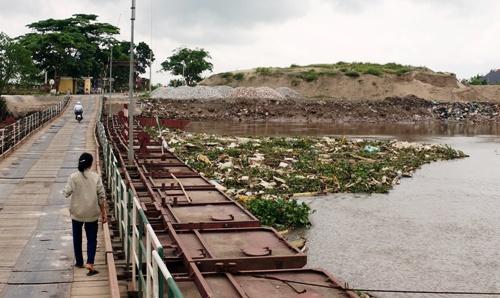 Xác lợn chết dịch từ thượng nguồn trôi dạt về cầu phao sông Hóa (Vĩnh Bảo) vào ngày 26/4. Ảnh: Thái Quang