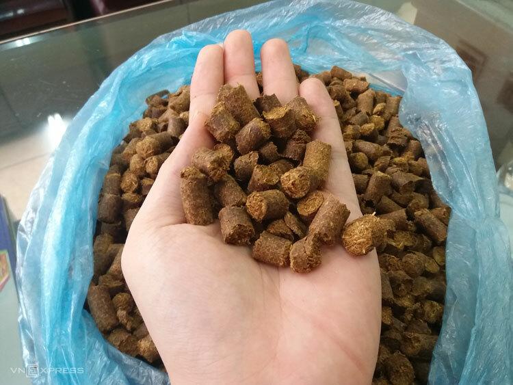 Thức ăn thô cho trâu, bò sản xuất từ phụ phế phẩm nông nghiệp. Ảnh: Phan Minh.