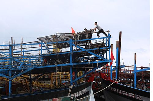Một tàu câu mực ngư dân Núi Thành cập bờ. Ảnh: Đắc Thành.