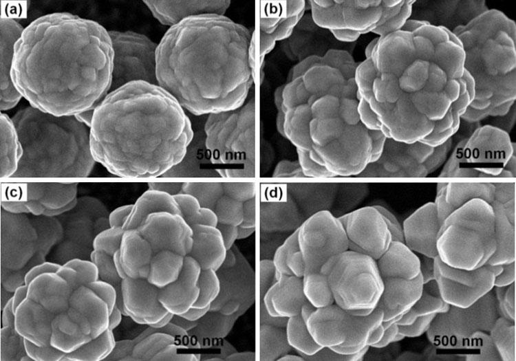 Các hoa nanô bạc. Ảnh:NVCC.