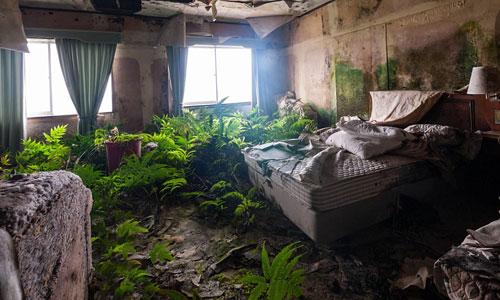 Bên trong một bất động sản bị bỏ hoang ở đảoHachijojima, Nhật Bản.