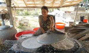 Người dân cạo ruột dừa làm bánh tráng Tam Quan