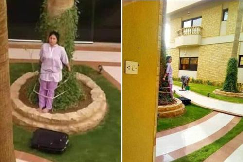 Nữ giúp việc Philippines bị chủ trói vào cây để phạt ở Arab Saudi - ảnh 1
