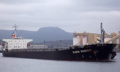 Tàu chở hàng  Jin Hai Xinang. Ảnh: Marine Traffic.