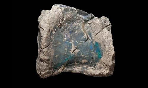 Một mẩu xương hóa thạch bị opal hóa. Ảnh: CNN.