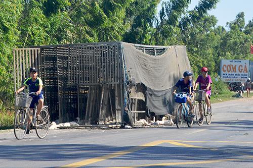 Xe tải bị lật khiến 1.800 con vịt chạy tán loạn ra đường.Ảnh:Quang Hà