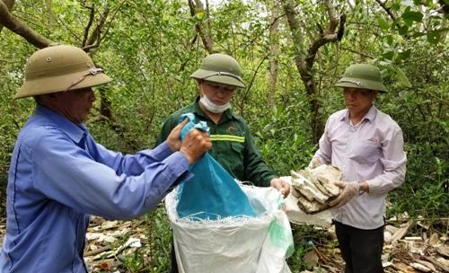 Người dân xã Tiên Hưng, huyện Tiên Lãng (Hải Phòng) tham gia thu dọn rác thải do sóng biển đánh dạt vào cánh rừng ngập mặn ven biển trên địa bàn. Ảnh: Giang Chinh