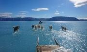 Bức ảnh đánh dấu Greenland mất 2 tỷ tấn băng trong một ngày