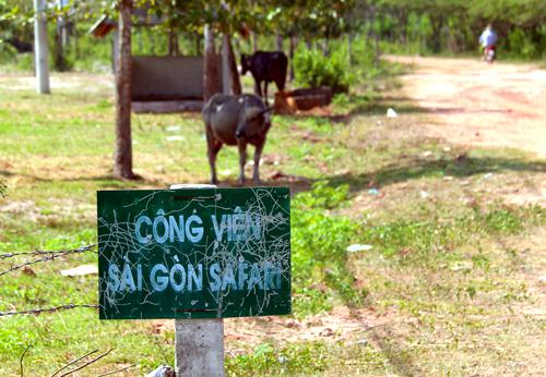 Dự án Sài Gòn Safari bị bỏ hoang hàng chục năm qua. Ảnh: Trung Sơn