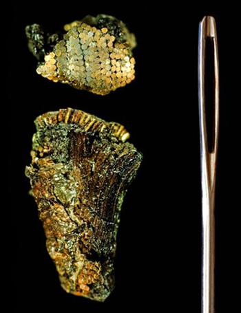 Phần chuôi dao gắn các hạt vàng tí hon đặt cạnhmột cây kim. Ảnh: University of Birmingham.