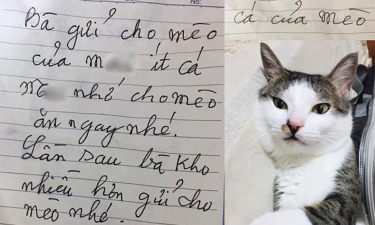 Được bà ngoại gửi cá kho, cháu gái ''khóc ròng'' vì lời nhắn trên giấy -