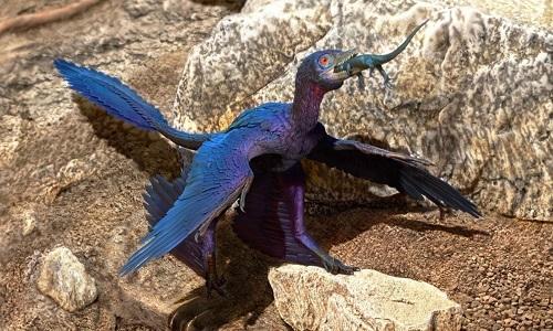 VNE-Microraptor-4437-1562897648.jpg