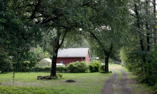 Căn nhà của vợ chồng Ceska ở Florida, Mỹ. Ảnh: USAToday.